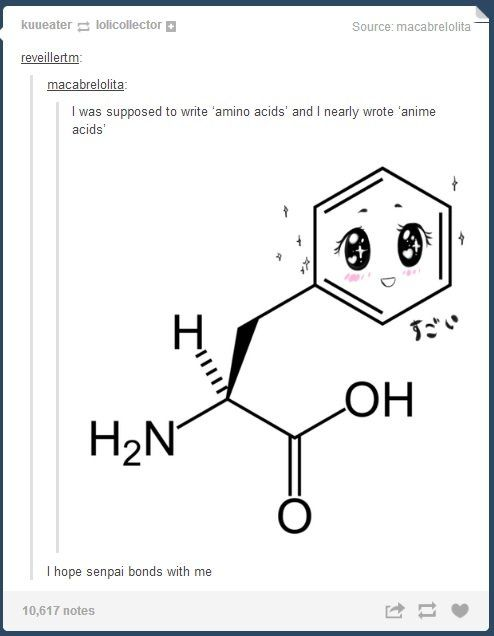 amino acids... | Nerd Humor | Pinterest