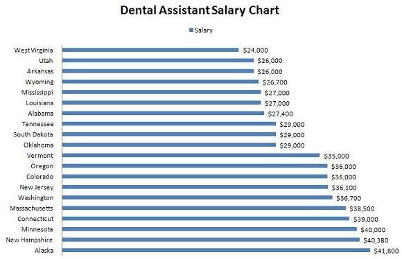Dental Assistant english essay websites