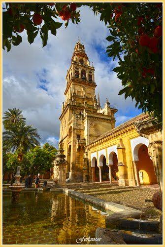 Torre   de  la  Mezquita, fuente  del  olivo y  Patio de los  Naranjos    Córdoba  Spain