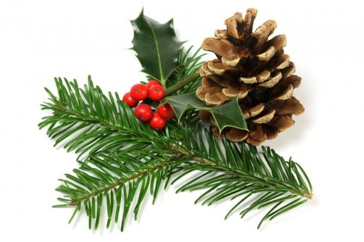 Natural Holiday Decorations Deerfield, IL #Kids #Events