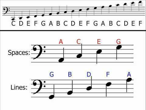 How to Read the Bass Clef: 9 Steps (with Pictures) - wikiHow