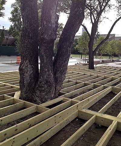 Deck Around Tree GardenYard Pinterest