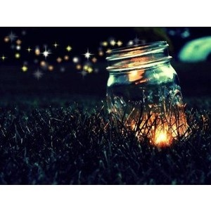 I want to see Fireflies