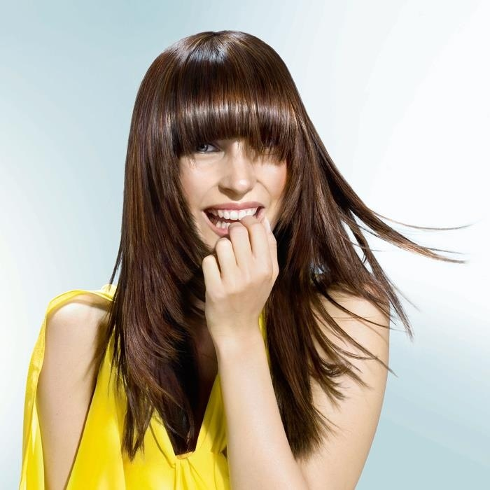 Rich chocolate brown hair