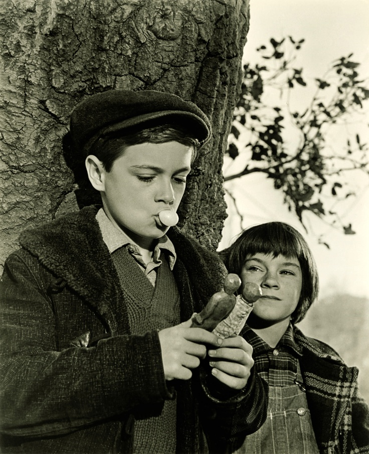 to kill a mockingbird miss maudie s relationship to the finches and the rest of maycomb What does the outcome of the trial in to kill a mockingbird tell us about the people in maycombreally need help  a white man's wordthis is.