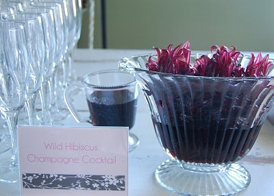 CarteWheels-Caterers | Wild Hibiscus Flowers | Pinterest