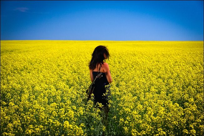 Woman in a Field of Flowers | Art / Photography / Vivid ...