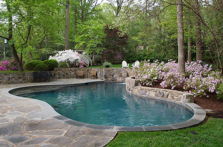 Landscaping around the pool pools pinterest for Landscaping around pool