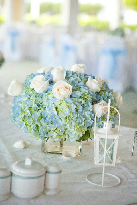 Beach wedding centerpieces bing images