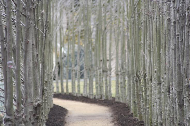 Sculpture Garden Hamilton Nj Places I Love Pinterest