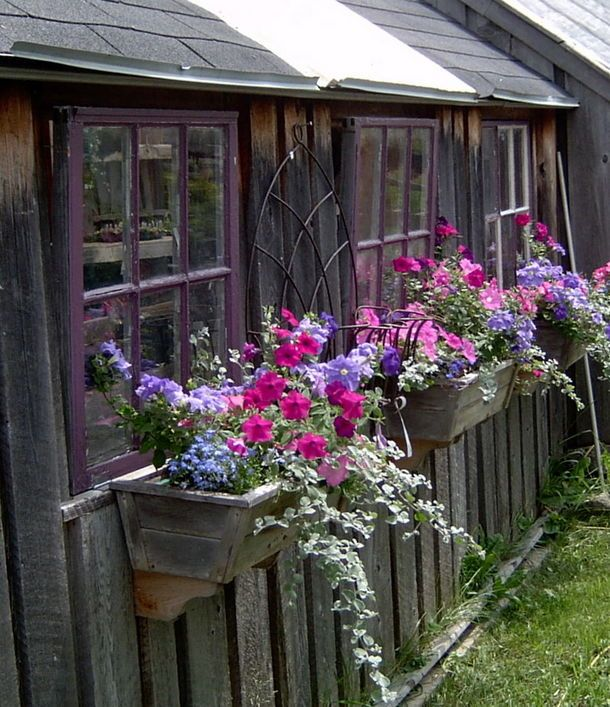 Colorful Window Boxes Window Boxes Pinterest