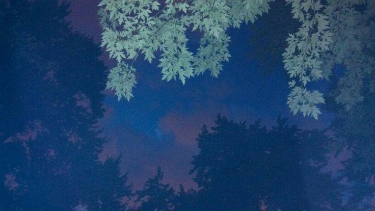 Night sky | Interests | Pinterest