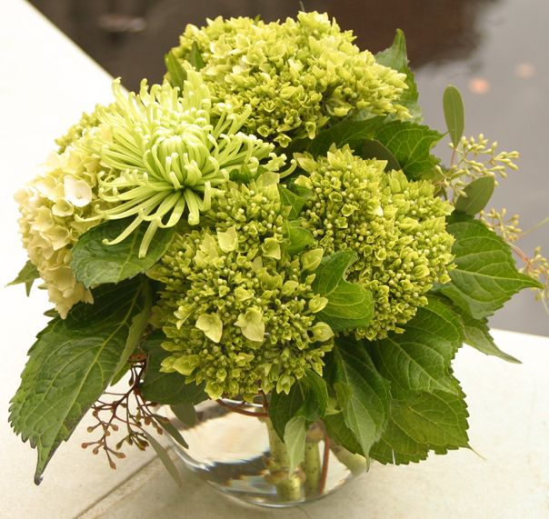 cheap flowers atlanta ga