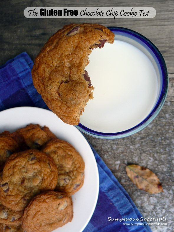 Alton Browns Gluten Free THE CHEWY Chocolate Chip Cookie | Recipe