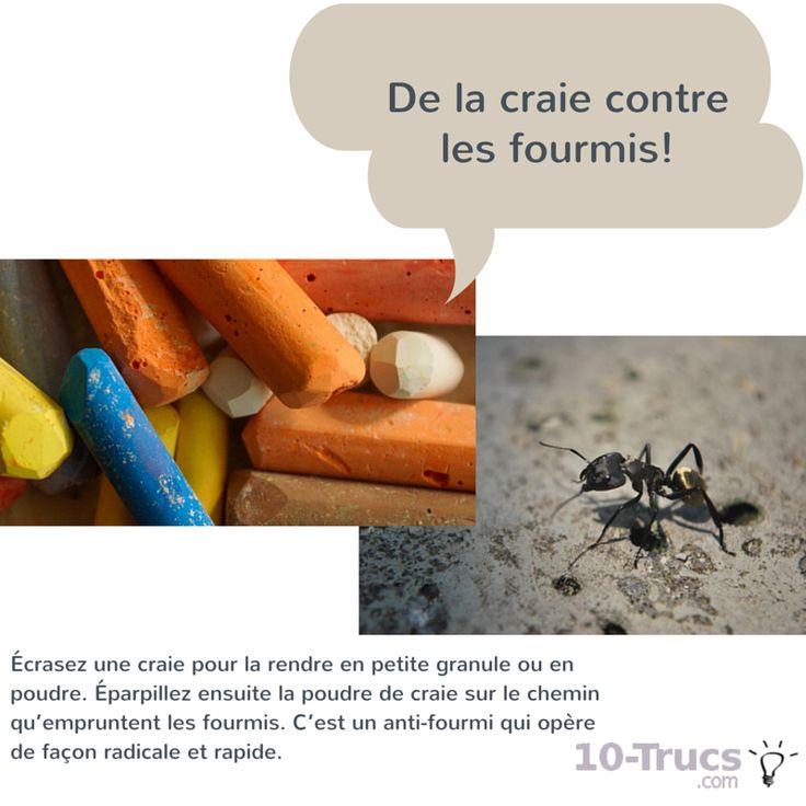 se dbarrasser des fourmis dans le jardin trucs et astuces se dbarrasser des fourmis piege. Black Bedroom Furniture Sets. Home Design Ideas