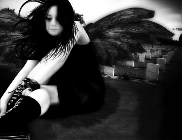 fallen-angel-black-wingsFallen Angels Wings