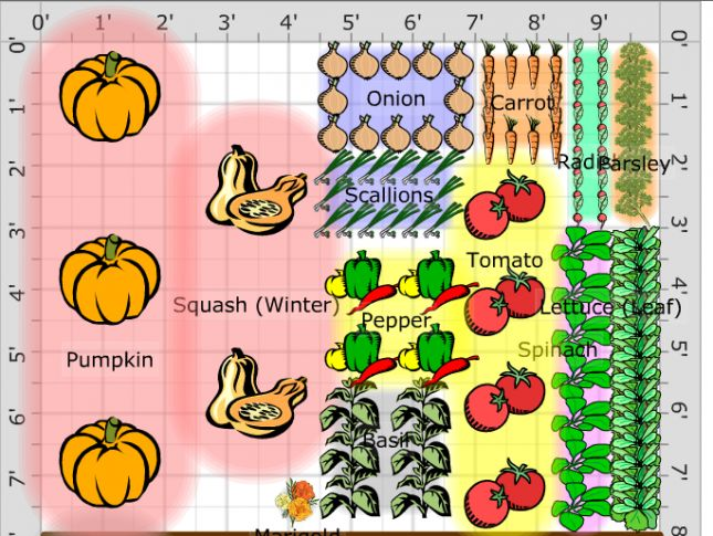 garden diagram Grow something Pinterest
