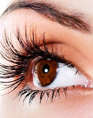 Eyelashes & Eyebrow Wax! Come to Beauty Bar & Browz in Ferndale, MI for all of your grooming and pampering needs! Call (313) 433-6080 to schedule an appointment or visit our website www.beautybarandbrowz.com to learn more about us!
