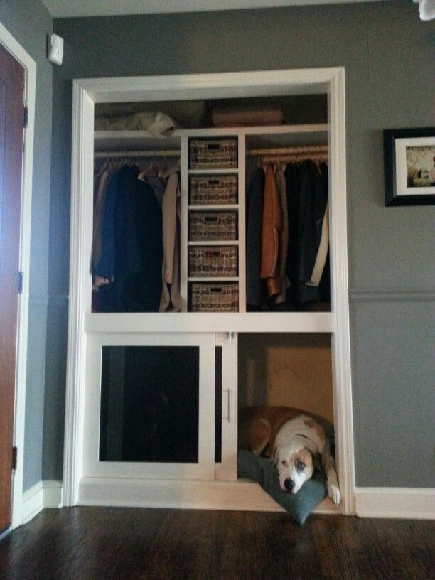 Built in dog crate. The bottom half of our entry closet wasn't being used. So instead of having those ugly metal crates sitting in our sunroom, my husband and i decided to build this. We were able to add a small shelving system in the middle to hold dog accessories, scarves, gloves, and winter hats.