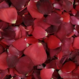 Freeze dried rose petals are FANTASTIC decorations for weddings and events as they are affordable and add color and warmth to any venue. Rose petals are inviting and are most often used to line an aisle, as a supplement to table decorations or as petals for tossing. Whatever the occasion, shop rose petals in bulk online at www.GrowersBox.com for exceptional deals and FREE shipping on wholesale rose petals.