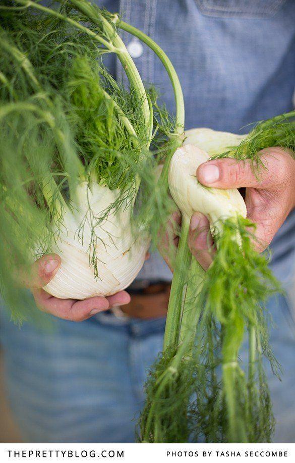 Fennel, Apple & Celery Salad | Recipes | The Pretty Blog