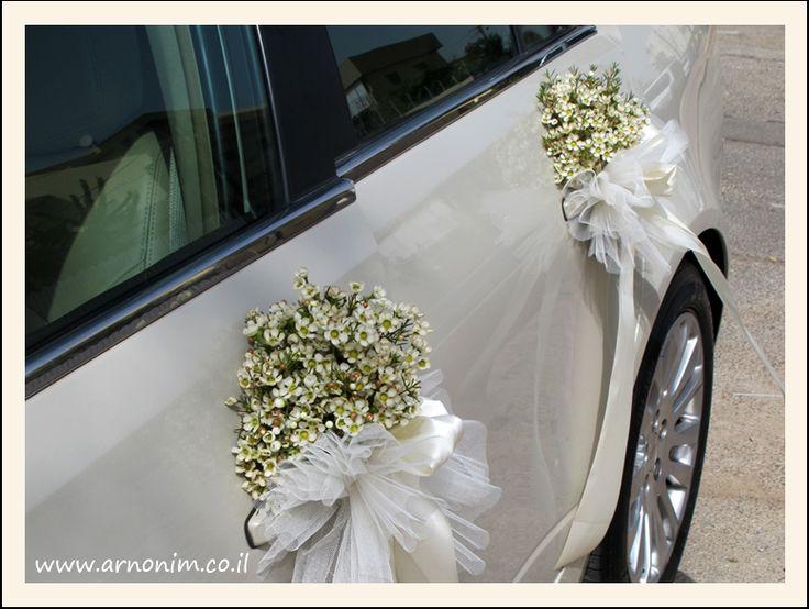 קישוט רכב wedding car decoration wediez