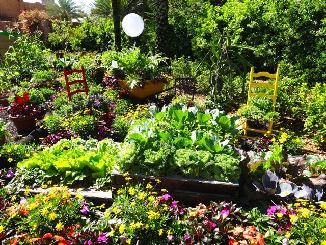 Backyard Edible Garden Ideas : Love the edible garden ideas