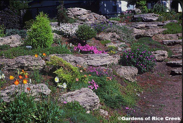 Uncluttered rock garden on a slope my flower garden for Sloped rock garden designs