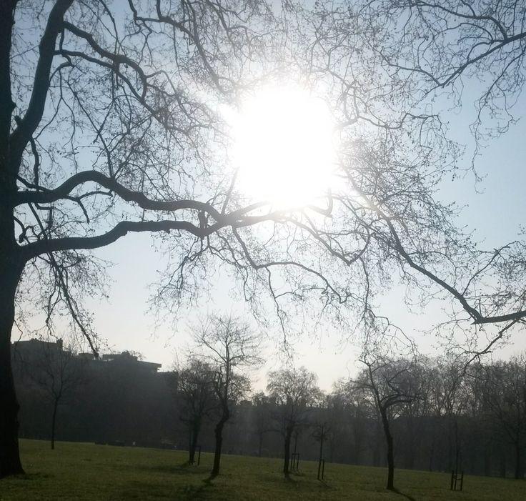 #greenpark #sunnyday #happy