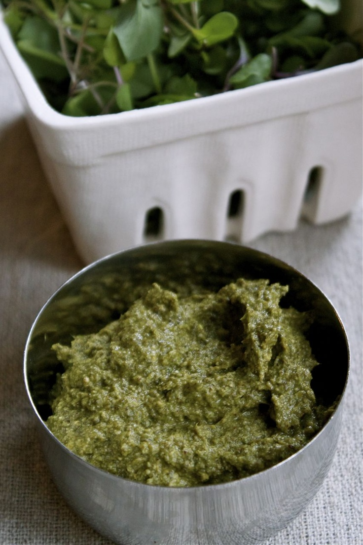 Nettle pesto | Food | Pinterest