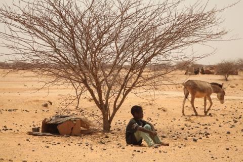 Sahel Drought 2012Sahel Drought