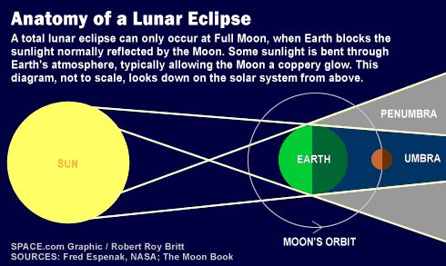 Anatomy of Lunar Eclipse | Astronomy Infographic | Pinterest