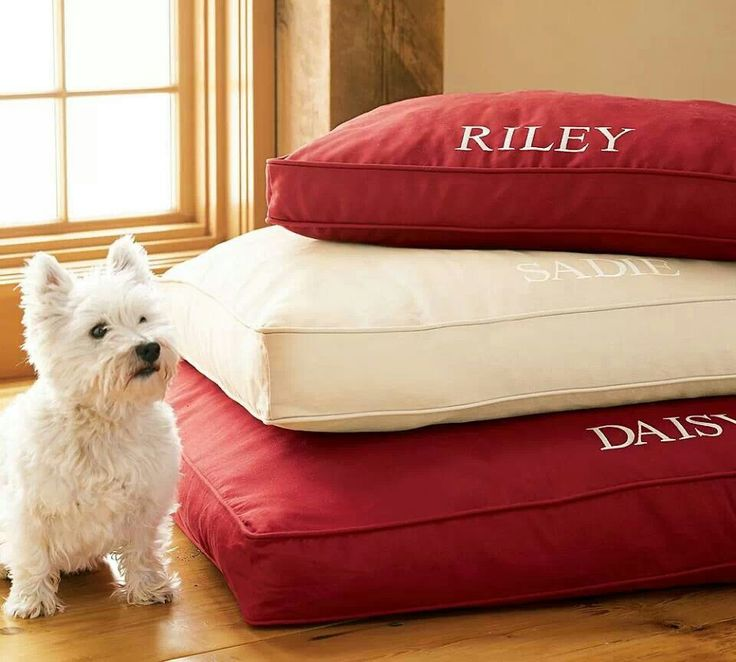Covered Beds For Dogs