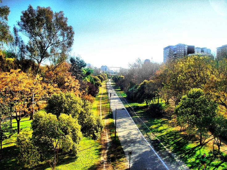 Jardines del r o turia en valencia valencia bike tour pinterest - Jardin del turia valencia ...