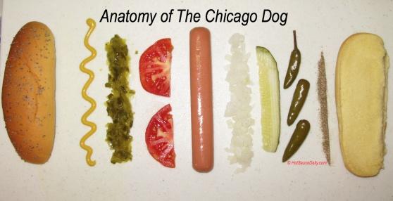 how to make a hotdog expository essay