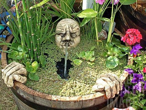 Pond Barrel Gardening Pinterest