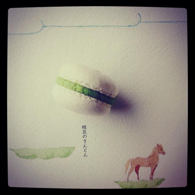 Japanese macaron cookbook | Macarons | Pinterest