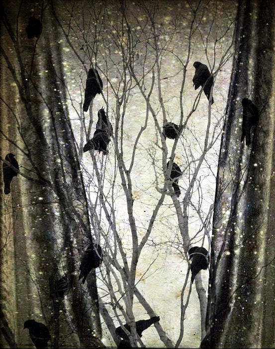 Stormy Winter Window - Gothic and Crows Art Photography