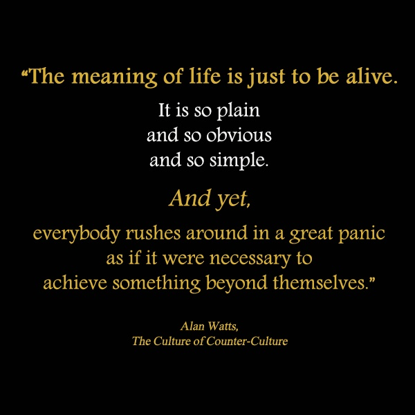 the meaning life quotes 600 x 600 70 kb jpeg