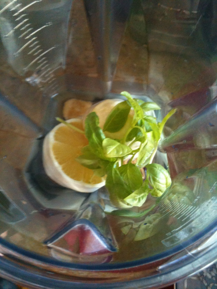 basil, honey & ice-cold water ready to be blended into a Frosty Basil ...
