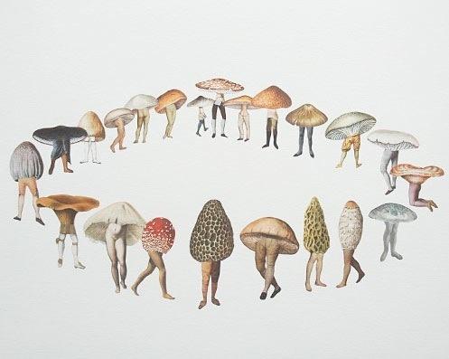 Mushroom Leg