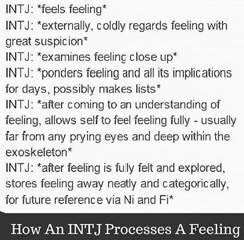 Dating intj girl