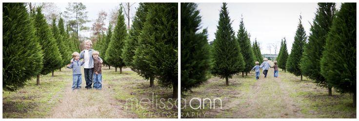 Photos on a christmas tree farm melissa ann photography louisiana