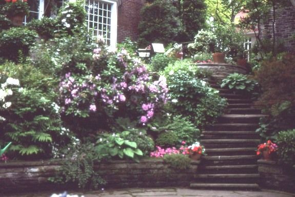 Landscaping Ideas For Shady Hillside : Shady sloped garden in a plantsman s toronto very