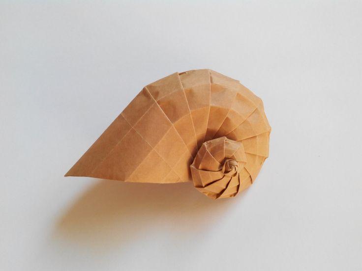 Как сделать ракушку объемную из бумаги