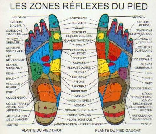 R 233 Flexologie Plantaire Sant 233 Pinterest