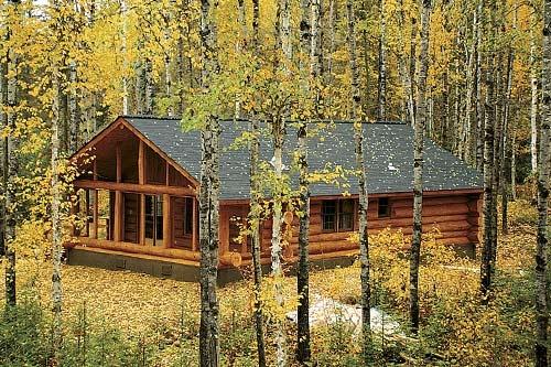 Minnesota cabin in autumn cabins pinterest for Piani di log cabin lodge