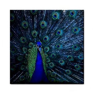 Proud Blue Peacock New Home Decor Ceramic Wall Tile Kitchen Coaster M