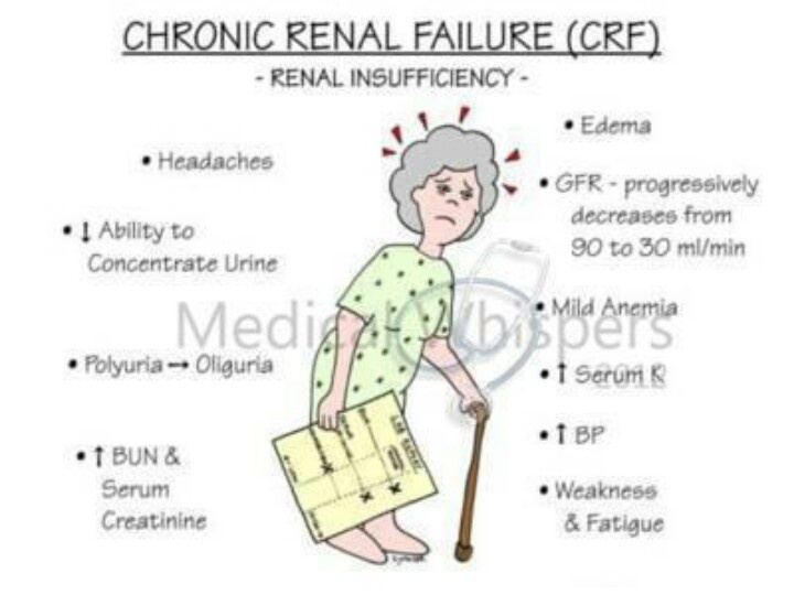 kidney essay Dialysis and kidney transplantation are treatments for severe kidney failure, also called kidney (or renal) failure, stage 5 chronic kidney disease, and end-sta english deutsch espa ol portugu s why uptodate product editorial.