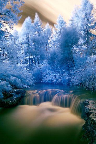 Infrared photo of Kerosine Creek thermal stream, Rotorua area, North Island, New Zealand.
